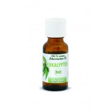Eukalyptus BIO-Ätherisches Öl 20ml