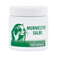 Murmeltier Salbe 100ml